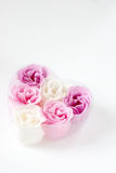 Heart of roses. Heart of pink and white roses on white background Stock Photography