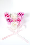 Heart of roses. Heart of pink and white roses on white background Royalty Free Stock Images