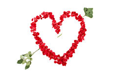 Heart of Roses with Arrow Royalty Free Stock Photography