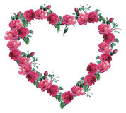 Heart of Roses. Beautiful heart made of pink roses Royalty Free Stock Photos