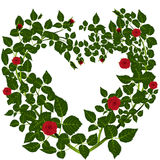 Heart of roses branches Stock Photos