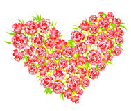 Heart from roses, vector illustration Royalty Free Stock Images