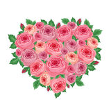 Heart of roses Royalty Free Stock Images