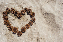 Heart on the sand of cones. Love Royalty Free Stock Image
