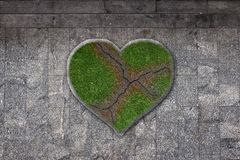 Heart with scar in grass Royalty Free Stock Photos