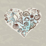 Heart of Sea shells Stock Photo