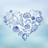 Heart of Sea shells.  Summer holidays. Stock Images