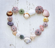 Heart of seashells and rocks Royalty Free Stock Images