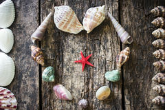 Heart of seashells, shells, shells, starfish in a frame of shells on the wooden table Royalty Free Stock Photo