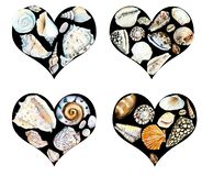 Heart of seashells. Watercolor hand drawn illustration royalty free illustration