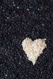 Heart of Sesame Stock Image