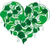 Heart-shape Stock Photos