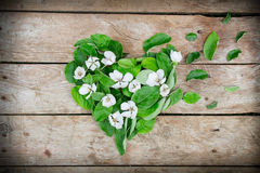 Heart shape arrangement made of leaves and flowers Stock Photos
