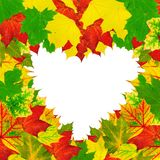 Heart shape autumn leaves frame Stock Photo