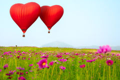 Heart shape ballooning Stock Photography