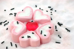 Heart shape candy around by marshmallows on snow royalty free stock image
