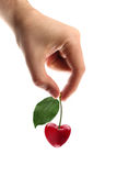 Heart shape cherry in hand Royalty Free Stock Photos