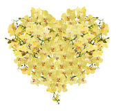 Heart shape composition from yellow orchid flowers Royalty Free Stock Photography