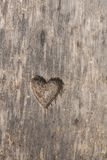 Heart shape cut in wood Stock Photos