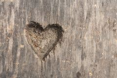 Heart shape cut in wood Stock Images