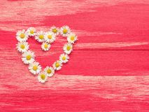Heart shape of daisies. On a wooden background with space for text or image Royalty Free Stock Photos