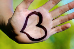Heart shape drawed on a male human hand. Green backround Stock Images