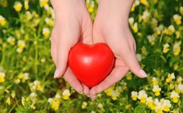 Heart shape in the female hands Royalty Free Stock Photos