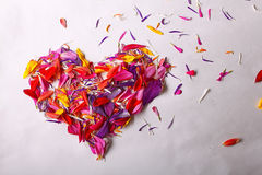 Heart shape from flower petals Stock Images