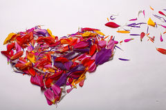 Heart shape from  flower petals Stock Photo