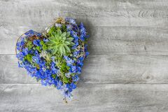 Free Heart Shape Flowers - Romantic Flowers - Sympathy Flowers In Heart Form - Florist Made Royalty Free Stock Photos - 216074508