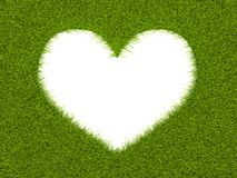 Heart shape frame from grass Stock Image