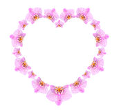 Heart shape frame from pink orchid flowers Royalty Free Stock Images
