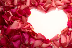 Heart shape frame of red rose petals. At white background Stock Photo