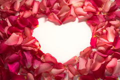 Heart shape frame of red rose petals. At white background Royalty Free Stock Image