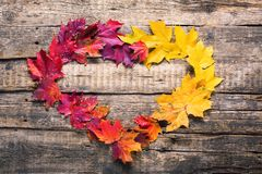 Heart shape frame red yellow leaves fall wooden. Heart shape frame red yellow maple leaves fall wooden vintage background thanksgiving holiday stock images