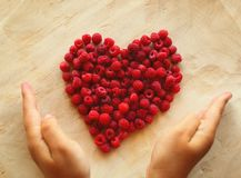 Heart Shape from Fresh Raspberry. Fresh raspberry grown wild arranged heart-shaped by child's hands; child's hands protect the raspberry heart-shaped. Everything Royalty Free Stock Photos