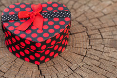 Heart Shape Gift Box on the Tree Trunk Stock Photo