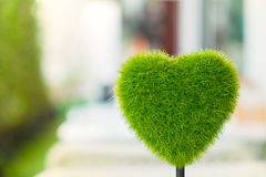 Heart shape grass Royalty Free Stock Photo