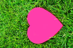 Heart shape on the grass Stock Image