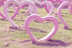 Heart shape on the grass ,vintage filter Royalty Free Stock Photos