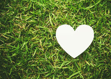 Heart shape on green Royalty Free Stock Images