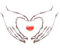 Heart Shape Hand Gesture Royalty Free Stock Photo