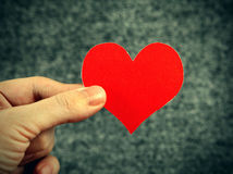 Heart Shape in the Hand Royalty Free Stock Image