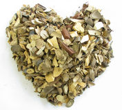Heart shape of herbal Stock Image