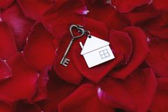 Heart shape key with house keyring on vibrant elegant red petal of rose background, romantic valentine sweet love concept. Home key gift, copy space stock image