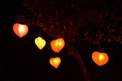 Heart shape lampion lantern at park at night. Heart shape lampion lantern at park trees at night time isolated in black stock photos
