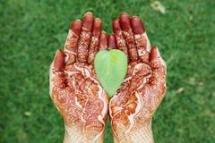 Heart shape leaf in henna hands Stock Photos