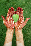 Heart shape leaf in henna hands Stock Photo