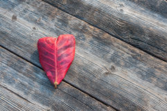 Heart shape leaf on wood background Royalty Free Stock Images