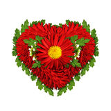 Heart shape made of aster flowers and leaves Stock Photo